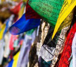 The Bhutan Himalayan Trip